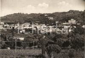 1950 ca FRASCATI (RM) Panorama della città *Cartolina FG VG