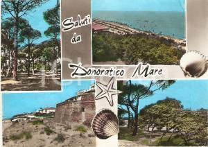 1966 CASTAGNETO CARDUCCI (LI) Vedutine frazione DONORATICO *Cartolina FG VG