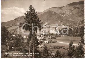 1955 CASTIONE DELLA PRESOLANA (BG) Panorama - Valle Seriana *Cartolina FG VG