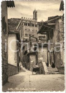 1955 ca GUBBIO (PG) Carretto in via Ambrogio Piccardi *Cartolina FG NV