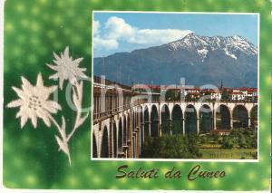 1968 CUNEO Veduta della città e stella alpina *Cartolina FG VG