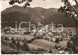 1960 ca TARVISIO (UD) Panorama del paese *Cartolina FG NV