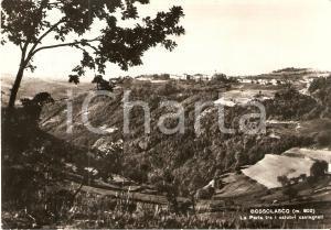 1961 BOSSOLASCO (CN) La perla delle LANGHE tra salubri castagneti *Cartolina FG