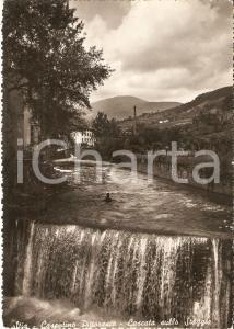1958 STIA (AR) Cascata sullo STAGGIA Panorama *Cartolina FG VG