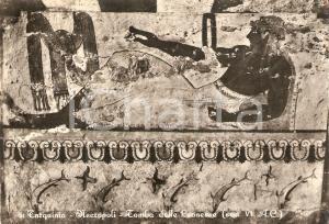 1954 TARQUINIA (VT) Necropoli - Tomba delle leonesse *Cartolina FG VG