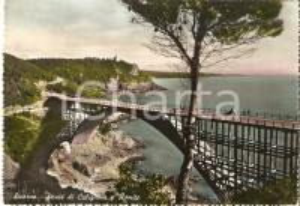 1956 LIVORNO Ponte di CALIGNAIA e ROMITO Panorama *Cartolina FG VG