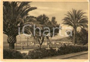 1940 ca REGGIO CALABRIA Palme in Via Marina *Cartolina FG VG
