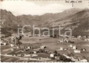 1964 CLUSONE (BG) Frazioni FIORINE e BOTTEGHINO con Pineta Selva Cartolina FG VG