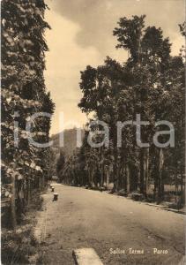 1953 SALICE TERME (PV) Panorama del parco *Cartolina FG VG