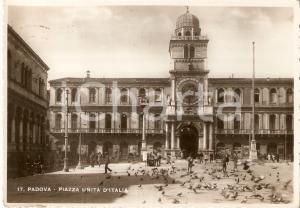 1943 PADOVA Piccione in volo in Piazza Unità d'Italia *Cartolina FG VG