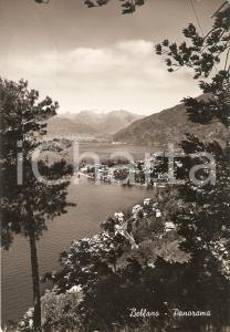 1952 BELLANO (CO) Panorama del paese con Lago di COMO *Cartolina FG VG