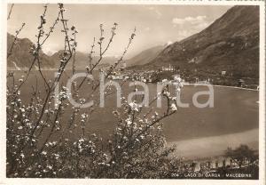 1941 MALCESINE (VR) Panorama con LAGO DI GARDA *Cartolina FG VG