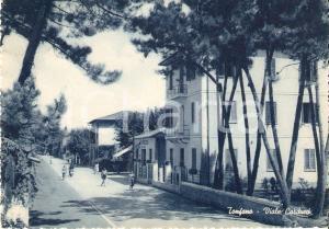 1950 ca MARINA DI PIETRASANTA Frazione TONFANO Viale Carducci *Cartolina FG VG