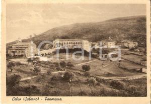 1955 POLLICA (SA) Panorama della Frazione CELSO *Cartolina FG VG