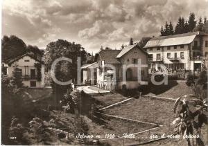 1960 ca SELVINO (BG) Ville fra il verde festoso *Cartolina FG NV