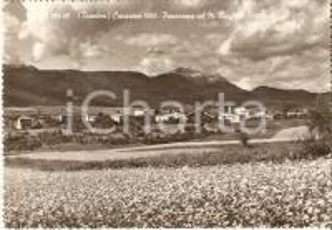 1955 CAVARENO (TN) Panorama con MONTE LUC *Cartolina FG VG