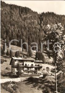 1960 ca MOENA (TN) Pensione MONTE PALLIDI Val di Fassa *Cartolina FG NV