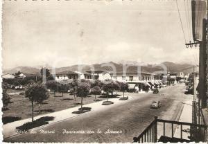 1955 ca FORTE DEI MARMI (LU) Panorama con ALPI APUANE *Cartolina FG VG