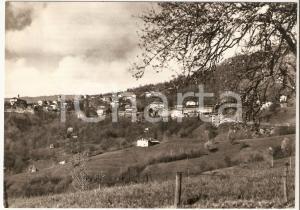 1970 NETRO (BI) Scorcio panoramico del paese *Cartolina FG VG