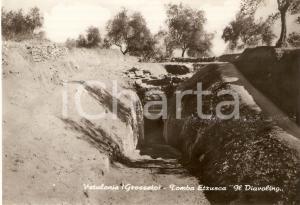 1960 ca VETULONIA (GR) Tomba etrusca IL DIAVOLINO Cartolina FG NV