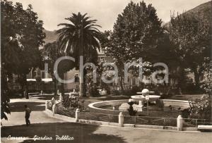 1956 CARRARA Veduta del giardino pubblico *Cartolina FG VG