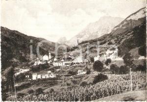 1954 PRATO CARNICO (UD) Frazione PESARIIS Panorama *Cartolina FG VG