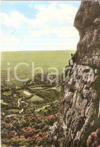 1962 VARESE - CAMPO DEI FIORI Escursionista sulla mulattiera *Cartolina FG VG