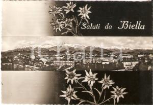 1955 BIELLA Panorama della città e stelle alpine *Cartolina FG VG