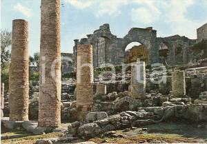 1970 ca TINDARI (ME) Ruderi e arcate del Ginnasio Romano *Cartolina FG NV