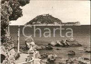 1958 ALASSIO (SV) Panorama di Isola Gallinara *Cartolina FG VG