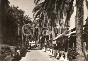 1955 ca ALASSIO (SV) Ristorante in Viale delle Palme *Cartolina FG NV