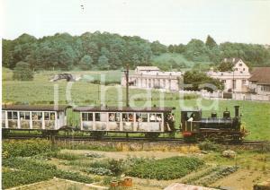 1972 SOOD (SVIZZERA) Locomotiva SiTB E 3/3 5 *Cartolina FG NV