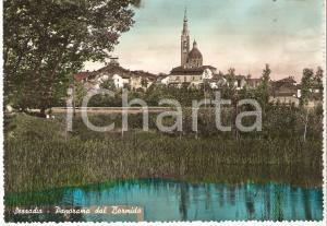 1950 ca SEZZADIO (AL) Panorama dal fiume BORMIDA *Cartolina FG NV