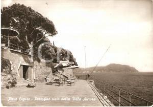 1955 ca PIEVE LIGURE (GE) Portofino visto da VILLA AURORA *Cartolina FG NV