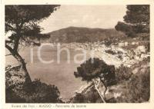 1955 ALASSIO (IM) Panorama da Levante - RIVIERA DEI FIORI *Cartolina FG VG