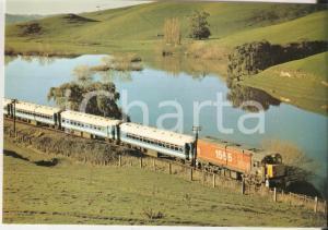 1980 ca NEW ZEALAND Wellington - Napier Express ENDEAVOUR *Cartolina FG NV