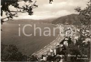 1956 ALASSIO (SV) Panorama - Riviera dei fiori *Cartolina FG VG