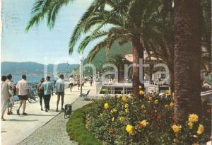 1966 ALASSIO (SV) Passeggiata sul lungomare fiorito *Cartolina FG VG