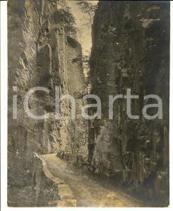 1930 ca VAL D'EGA /EGGENTAL Un sentiero panoramico *Foto J. GUGLER 21x26 cm