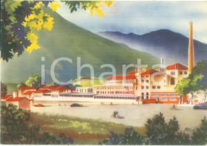 1958 PEDAVENA (BL) Fabbrica Birra Pedavena Cartolina pubblicitaria ILLUSTRATA FG
