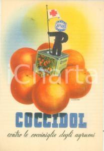 1940 ca MILANO Società Elettrica del CAFFARO Insetticida COCCIDOL Cartolina FG