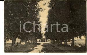 1930 CENTALLO (CN) Veduta del viale della Stazione *Cartolina postale FP VG