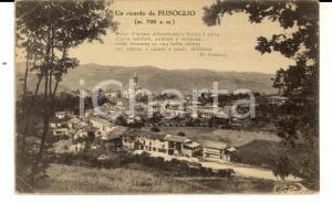 1932 FEISOGLIO (CN) Panorama del paese - Versi GARELLI *Cartolina postale FP VG