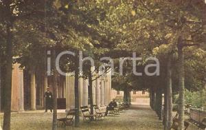 1917 SAN PELLEGRINO TERME Viale dei tigli Porticato della Fonte *Cartolina FG VG