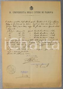 1924 UNIVERSITA' DI PADOVA Certificato di laurea con esami di Nelly NUCCI