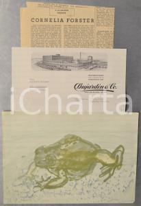 1960 ca CORNELIA FORSTER Lotto lettera + biografia e riproduzione artista