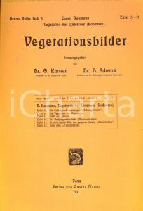 1911 Eugen BAUMANN Vegetation de Untersees Tafel 13-18 *Gustav Fischer JENA