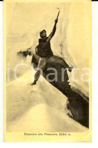 1915 ca TRENTINO Crepaccio alla PRESANELLA con alpino *Cartolina FP NV