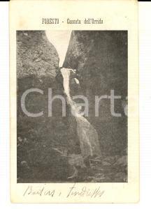 1904 BUSSOLENO (TO) FORESTO - Cascata dell'Orrido *Cartolina VINTAGE FP VG