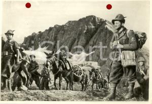 1940 WW2 ALPINI in marcia con i muli da trasporto *Foto per cartolina MARZARI